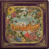 Panic at the Disco Pretty. Odd.