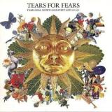 Tears for Fears Tears Roll Down (Greatest Hits 82-92)