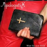 Apologetix Wise Up and Rock