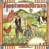 Fleetwood Mac Rumours Album Cover Parodies
