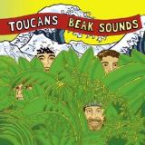 Toucans Steel Drum Band Beak Sounds