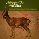 Various Artists Do It Again : A Tribute to Pet Sounds