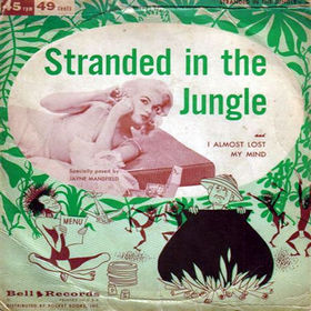 Jimmy Leyden Stranded in the Jungle