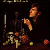 Robyn Hitchcock Groovy Decay