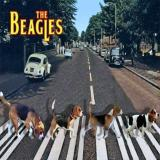 The Beagles Abbey Curb
