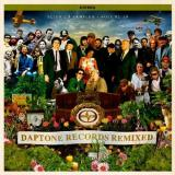 Various Artists Daptone Records Remixed