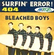 beach boys 404 error image parody of 409