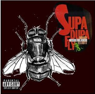 Album cover parody of Supa Dupa Fly by Missy Misdemeanor Elliott