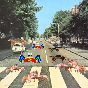 Album cover parody of Crabby Road by The Beatles