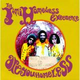 Album cover parody of Are You Experienced by The Jimi Hendrix Experience