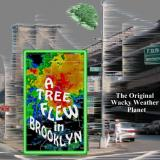 Arthur Schwartz, Dorothy Fields A Tree Grows In Brooklyn (1951 Original Broadway Cast)
