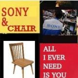 Album cover parody of All I Ever Need Is You by Sonny & Cher