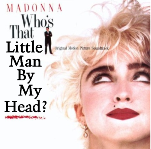 Album cover parody of Who's That Girl by Madonna