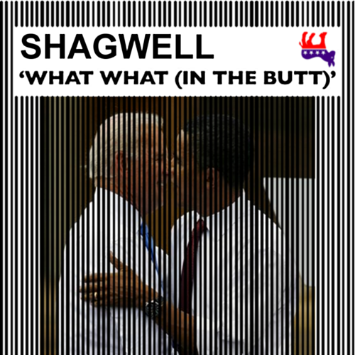 Album cover parody of What What (In The Butt) by Samwell