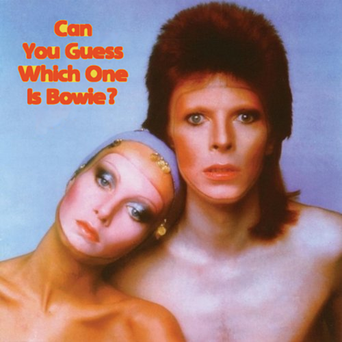Album cover parody of Pin Ups by David Bowie