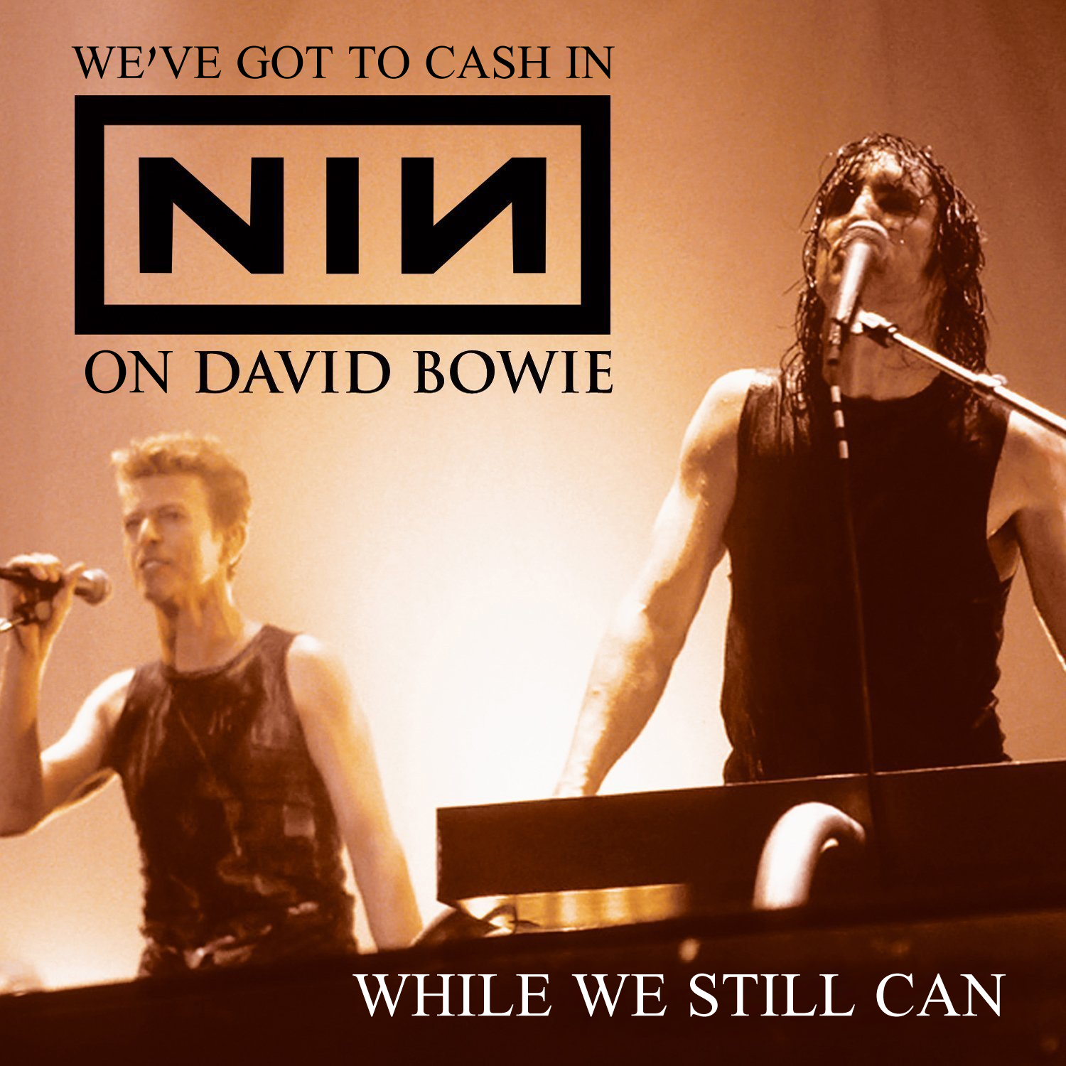 Album Cover Parodies of Nine Inch Nails Feat. David Bowie - We Prick ...